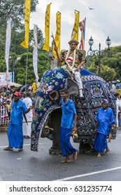 KANDY, SRI LANKA - AUGUST 11, 2014 : A ceremonial elephant carrying a Buddhist temple priest parades along  the streets of Kandy during the Day Perahera on the final day of the Esala Perahera.
