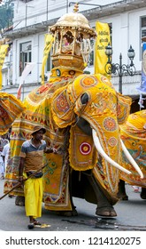 KANDY, SRI LANKA - AUGUST 30, 2015 : A ceremonial elephant dressed in yellow cloak parades along a street during the Day Perahera, the final event of the Buddhist Esala Perahera (great procession).