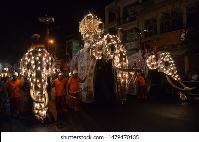 Kandy, Sri Lanka : August-05-2019 : Ceremonial Tusker carrying the Sacred Casket in Kandy Esala Perahera parade also known as the festival of the Buddha tooth.