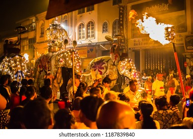 Kandy  Sri Lanka July 29 2017 -  Procession of the elephants during the Kandy festival in Sri Lanka. The elepant in the middle carries the tooth relic of the Temple of trhe Tooth in Kandy.