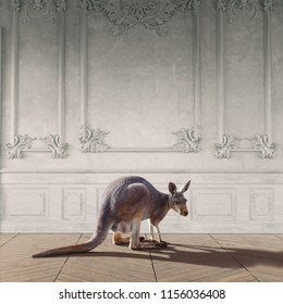 kangaroo in the room interior. Photo combinated concept