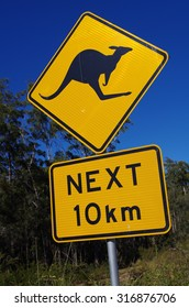 Kangaroo warning roadsign, Australia