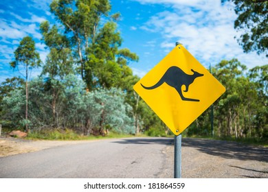 Kangaroo warning sign on a road.