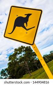Kangaroo warning signal