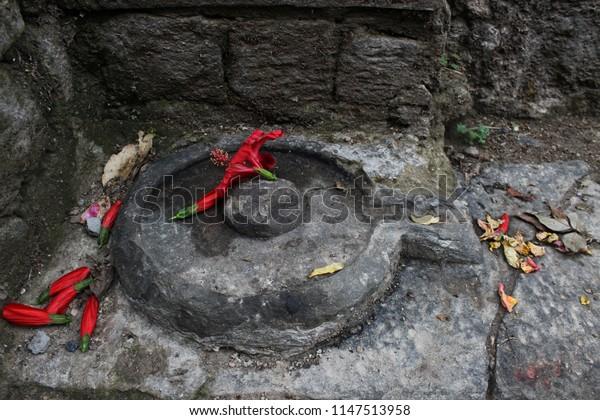 Kangra Himachal Pradesh India April 10 Stock Photo (Edit Now