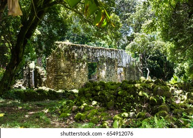 Kaniakapupu Ruins, Oahu, Hawaii. King Kamehameha III's summer home, hidden in the Nu'uanu forest region.