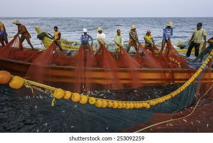 KANNUR, INDIA - DECEMBER 12, 2011: Fishermen pull in a large net of sardine at dawn on a deep sea fishing trip in the Arabain Sea on December 12, 2011 near Kannur, Kerala, India.