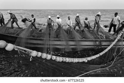 KANNUR, INDIA - DECEMBER 22, 2011: Fishermen haul in a large net of sardine during trip into Arabian Sea on December 22, 2011 near Kannur, Kerala, India.