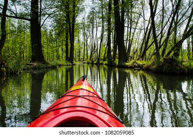 Kanoe in the Spree river in the forest, Spreewald, Germany.