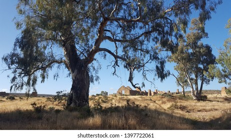 Kanyaka, Flinders Ranges, Quorn mountain