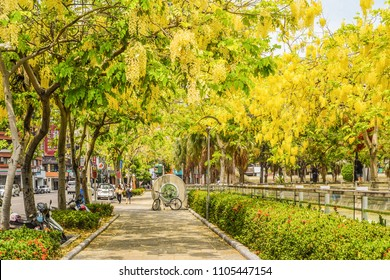 Kaohsiung, Taiwan-June 3, 2018: Street View at Kaohsiung Chiang Kai-Shek Cultural Center With Cassia Fistula (Golden Shower Tree) Blooming