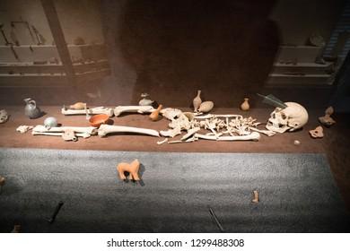 Karacasu - Aydın / TURKEY 03 January 2019: Afrodisias Ancient city  (Aphrodisias), Human skeleton inside the Hellenistic, Roman and Byzantine  period ancient museum. UNESCO on the World Heritage List