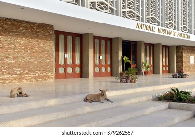 KARACHI, PAKISTAN - FEB 19: Street dogs entered into National Museum premises and sitting on stairs may harmful for visitors showing negligence of watchmen, on February 19, 2016 in Karachi.