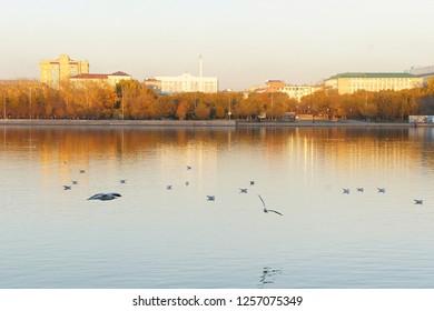 Karaganda city park,   09.12.2012