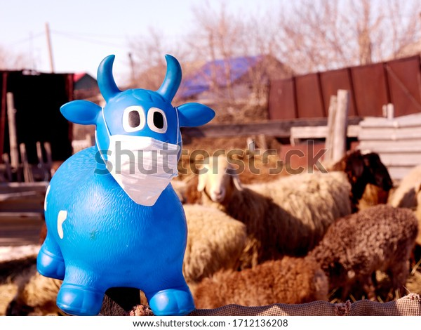 Karaganda, Kazakhstan - 29.03. 2020-toy cow with protective face mask. live sheeps in the background.