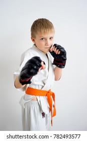 Karate boy training