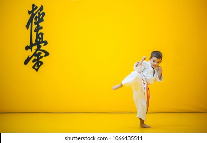 A karate kid practicing a high kick. With the word kyokushinkai on the background. Which means: the last truth associated.