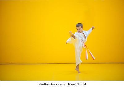 A karate kid practicing a high kick.