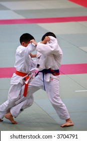 The karate kids fighting for the competition