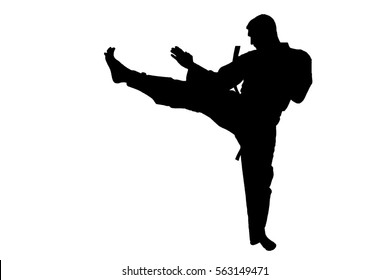 karate  martial arts man silhouette. Karate training
