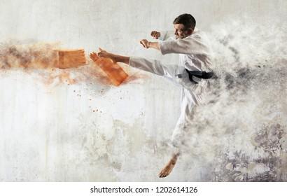 Karate masters breaking with leg wooden board