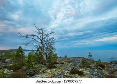 Karelia. Islands in Lake Ladoga. The nature of Russia. Travel to Russia. Republic of Karelia. Northern nature. Nature of Karelia.