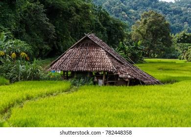Karen village Beautiful nature Sufficient lifestyle Tha Song Yang District, Tak Province, Thailand