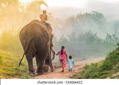 Karens Family are walking with their elephant at Karen Village, Sai Yok, Kanchanaburi, Thailand