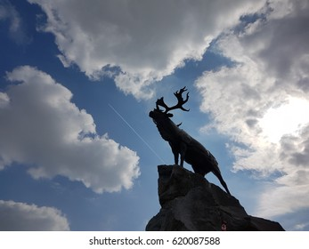 Karibou or moose on the edge of a cliff looking at the sky with sun in the background and a plane flying by