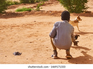 Karima, Sudan, February 10., 2019: Sudanese boy playing with small dogs on a dirt road on the outskirts of the city