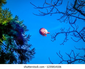 Karlsruhe, Baden-Württemberg / Germany - 12 23 2009: Otto de airship, Zeppelin in the air over Botanical Garden in Karlsruhe city in the Schwarzwald or Black Forest in the southwest of Germany
