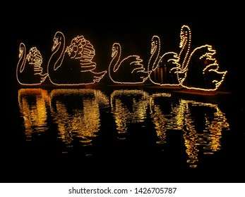 Karlsruhe, Germany, September 2012: Shining swans from lamps at sea with reflection - Festival of Lights Karlsruhe