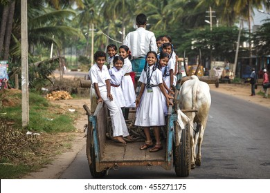 KARNATAKA/INDIA - NOVEMBER 28, 2015: Smiling indian schoolkids in white school uniforms ride on the rural bullock cart to the school in Indian village.