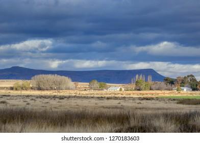 KAROO LANDSCAPES  Homestead on a Karoo farm, South Africa.