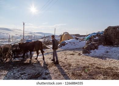 Kars / Turkey - 02/05/2017: A village of Kars, Turkey. Young shepherd herds his sheep.