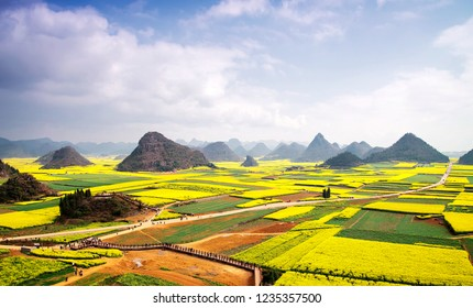 Karst landforms and rapeseed flowers, in luoping, yunnan province, China