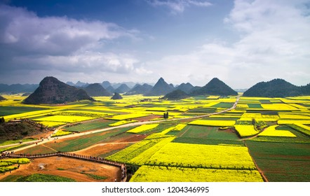 Karst landscape and rape flowers - in China's yunnan province
