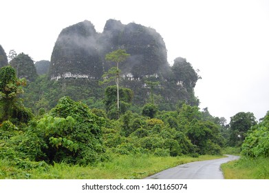 Karst Mountains in the rural area and the green environment with the foreground of a quiet road