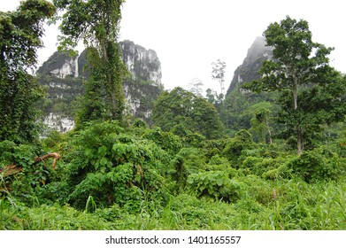 Karst Mountains in the rural area and the green environment