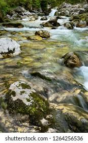 Karst rocks at alpine Lepenica river in Spring at Sunikov Vodni Gaj Nature Preserve in Triglav National Park Julian Alps Lepena Valley Slovenia - Shutterstock ID 1264256536