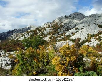 Karst Velebit landscape along the Majstorska road and saddle Mali Alan - Croatia (Krski velebitski krajobraz uz majstorsku cestu i prijevoj Mali Alan, Velebit - Hrvatska) - Shutterstock ID 1683421267