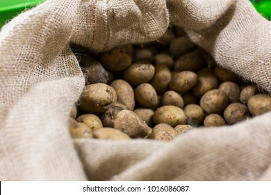 Kartoffeln im Jutesack