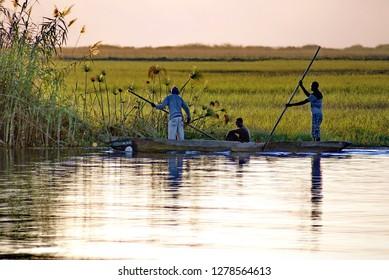 KASANE, BOTSWANA - CIRCA AUGUST 2013: African men poling a wooden mokoro canoe in Chobe National Park, Botswana