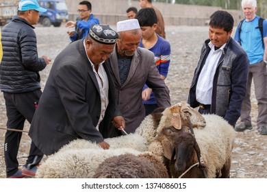 KASHGAR, XINJIANG / CHINA - October 1, 2017: Two Uyghur men inspecting lambs at Kashgar Animal Market. The market takes place every week at Sunday.