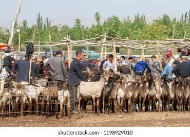 Kashgar, Xinjiang, China - September 15, 2018 :  Buyers and sellers at sheep pens during Sunday Livestock Market and Bazaar in Kashgar, or Kashi, Xinjiang, China.