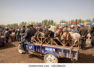 Kashgar, Xinjiang, China - September 16, 2018 :    Motorbike pulling trailer of sheep at the Sunday Livestock Bazaar and Market in Kashgar, or Kashi, China.