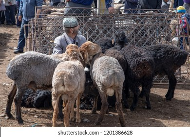 Kashgar, Xinjiang, China - September 16, 2018 :    Man surrounded by sheep at the Sunday Livestock Bazaar and Market in Kashgar, or Kashi, China.