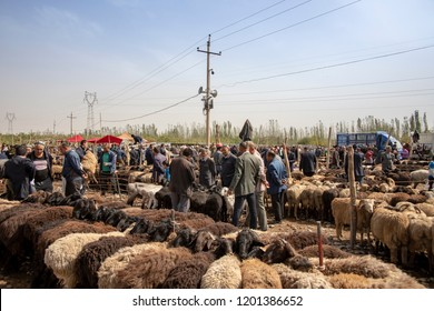 Kashgar, Xinjiang, China - September 16, 2018 :    Uyghur men haggling over sheep at the Sunday Livestock Bazaar and Market in Kashgar, or Kashi, China.
