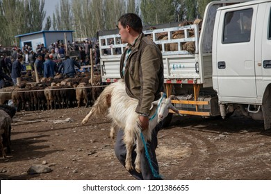 Kashgar, Xinjiang, China - September 16, 2018 :  Man carrying goat through  the Sunday Livestock Bazaar and Market in Kashgar, or Kashi, China.
