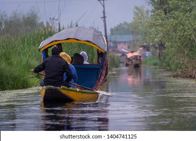 Kashmiri man rowing wooden boat to floating market on Dal Lake early morning is major tourist attractions local life of the floating community in Srinagar, Kashmir, India